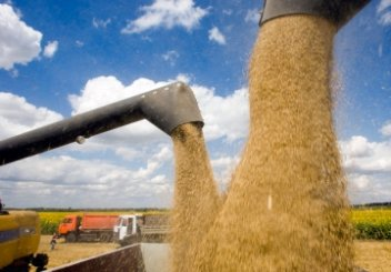 Ukraine exports almost 4 mln tonnes of grain since start of 2017/2018 MY