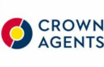 Savings on Crown Agents purchases for 2016 budget funds could reach UAH 86 mln