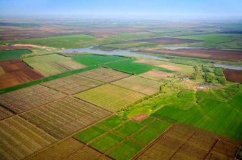 Cost of 1 ha of farmland if moratorium is annulled could be UAH 50,000-60,000 – agriculture ministry