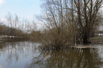 SBU: Chemical plant in Luhansk region pouring waste to river