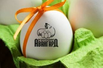 Polish egg producers alarmed with Anvangard's arrival to EU market