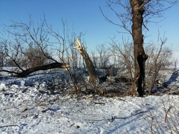 Militants shell Ukrainian army positions in Donbas 4 times on Friday, one servicemen killed in explosion