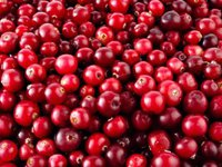 MPs propose lowering VAT for berry producers to 7% from 2019