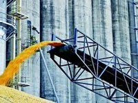 Ukraine exports record 57 mln tonnes of grain in 2019/20 agri-year
