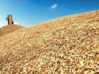 Ukraine exports 35 mln tonnes of grain since start of 2016/2017 MY