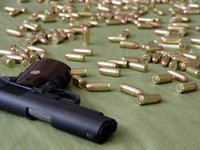 Rada rejects bills on weapons legalization