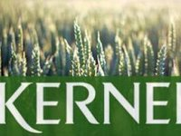 Russia's sanctions not to impact operations, financial performance of Kernel