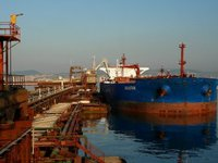 Some 16 ships violate ban on entering ports in annexed Crimea in Sept