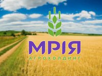 Investment analysts estimate total value of Mriya at $175-300 mln