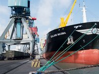 Mariupol seaport increases cargo handling by 30.4% in Q1 2020