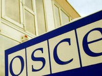 Ukraine's election competitive, with citizens' opportunity to choose - OSCE observers
