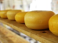 Cheese imports to Ukraine almost double in 2020