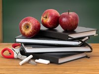 Academic year in Ukraine to start as usual from Sept 1 - Shmyhal