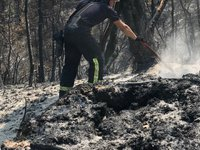 Ukrainian rescuers continue to assist in battling wildfires in Greece